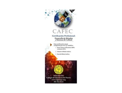 CERTIFICACIÓN PROFESIONAL: DESARROLLO DE MÉTODOS Y SISTEMAS DE CALIDAD