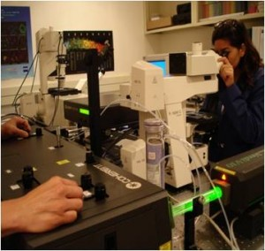 Confocal Imaging Facility